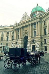 Vienna Fiaker