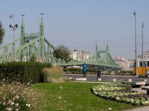 Budapest Liberty Bridge BRC