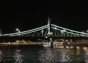 Budapest Liberty Bridge Night BRC