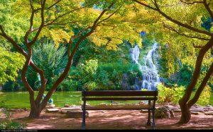 Margaret Island Budapest Japanese Garden Moyan Brenn