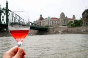 Private Wine Tasting on Yacht in Budapest
