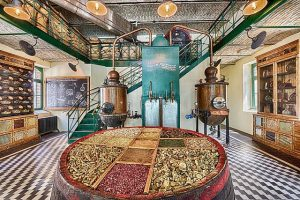 Guided Tour in Zwack Distillery